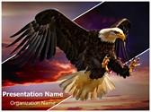 Eagle Flight Editable PowerPoint Template