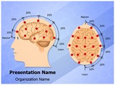 Eeg Electrode Placement PowerPoint Templates