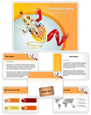 Animal Digestive System Editable PowerPoint Template