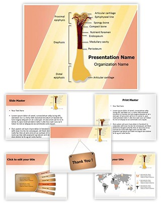 Bone Structure Editable PowerPoint Template