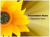 Sunflower Editable PowerPoint Template