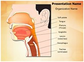 Nose mouth and throat PowerPoint Templates