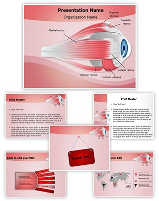 Ophthalmology Eye Muscles Editable PowerPoint Template