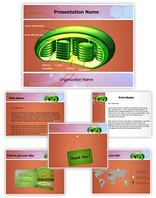 Photosynthesis Chloroplast Editable PowerPoint Template