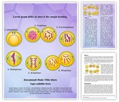 Genetic Engineering Mitosis Template