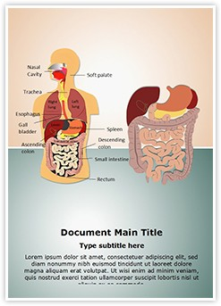 Digestive System Editable Word Template
