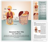 Digestive System Template