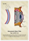 Cornea Tear Film Formation