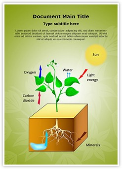 Plant Schematic Photosynthesis Editable Word Template