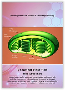 Photosynthesis Chloroplast Editable Word Template