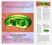 Photosynthesis Chloroplast Template