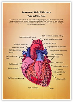 Cardiac Blood Vessels Editable Word Template