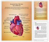 Cardiac Blood Vessels Template