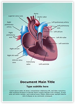 Cardiovascular Anatomy Ventricle Editable Word Template