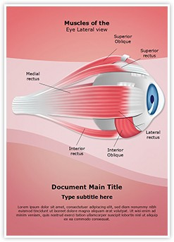 Ophthalmology Eye Muscles Editable Word Template