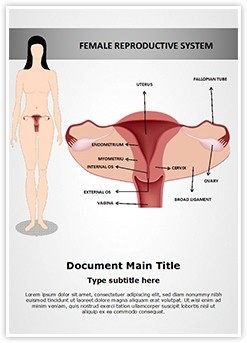 Female Reproductive System Editable Word Template