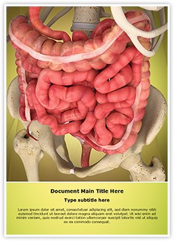 Intestinal Internal Organ Editable Word Template