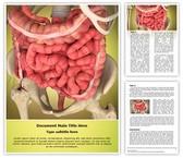 Intestinal Internal Organ Template