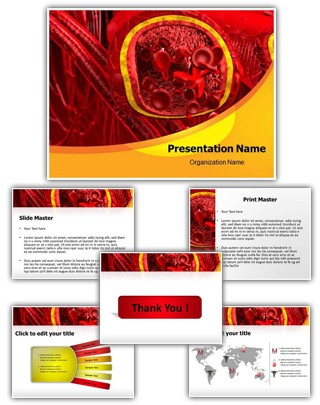 Blood Arteries And Veins PowerPoint Presentation Template With Editable Charts