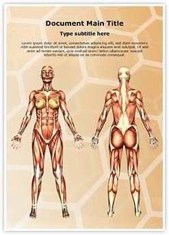 Women Muscular Anatomy Editable Word Template