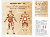 Women Muscular Anatomy Editable PowerPoint Template