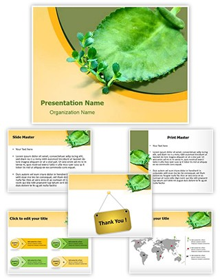 Asexual Reproduction Editable PowerPoint Template