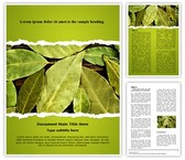 Bay Leaves Template
