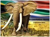 African Elephant Editable PowerPoint Template